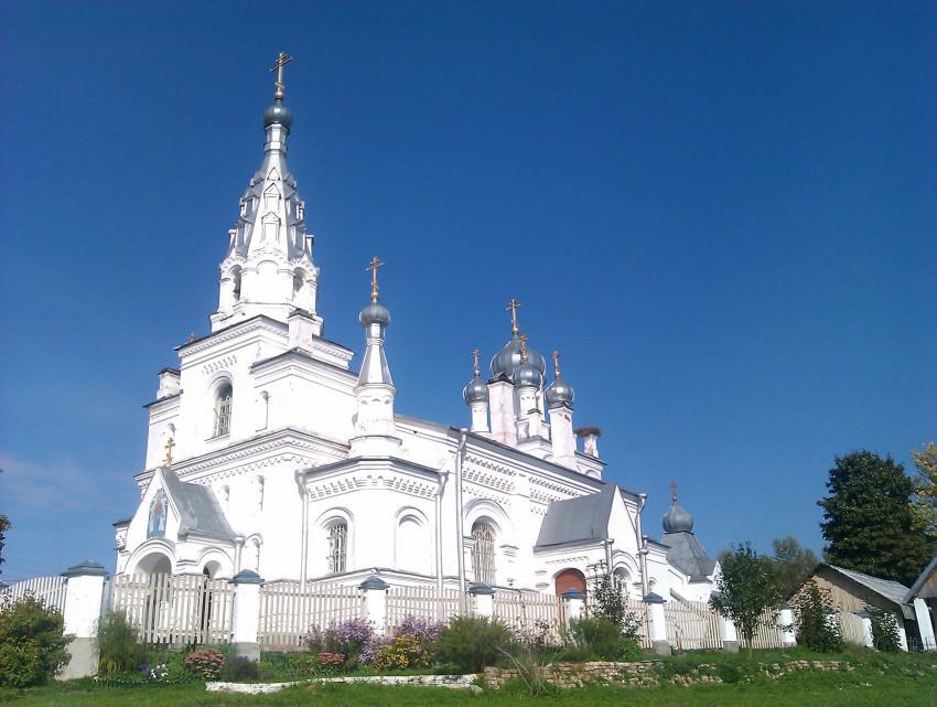 Церковь Покрова Пресвятой Богородицы в деревне Козья Гора